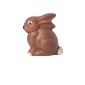 Hase sitzend Schokolade